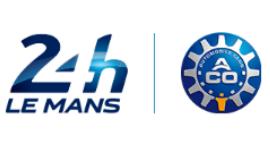 Electronics Technical Delegate - Le Mans / France - ACO